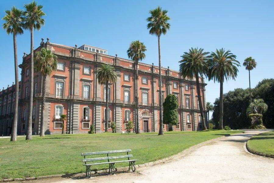 Museo Capodimonte