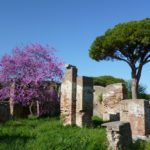 Ancient Ostia guided tour-1